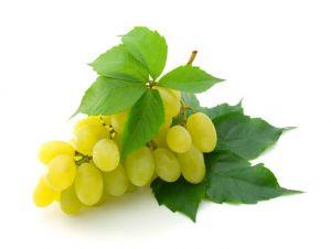 Виноград Томсон